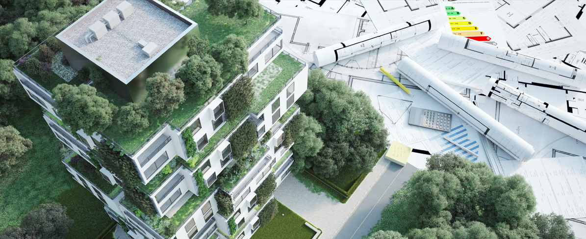 building with greenery surrounded by architect designs